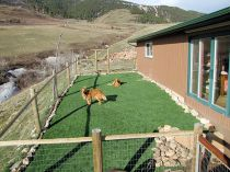 Artificial Grass Installation in Billings, Montana