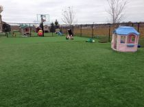 Artificial Grass Installation in Saint Paul, Minnesota
