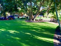 Artificial turf always green lawn large backyard ideas no water or maintenance.