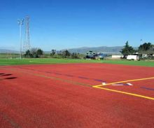 Synthetic turf for sports fields agility training