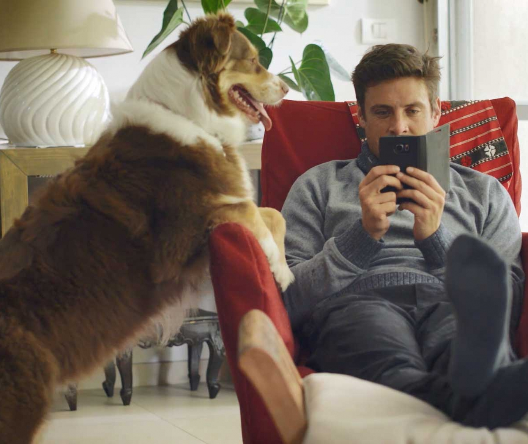 Man sitting in a chair buying online and a big dog