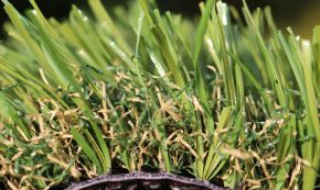 Most Realistic Synthetic Grass