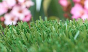 Synthetic Field Turf With Realistic Blades