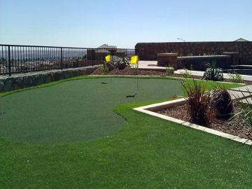 Artificial Grass Photos: Artificial Grass, Fake Grass in El Paso, Texas