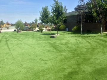 Artificial Grass - Artificial Grass Installation in Stockton, California