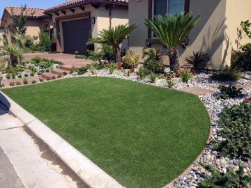 Artificial Grass - Artificial Grass Installation in Plano, Texas
