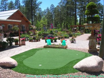 Artificial Grass Photos: Artificial Grass in Phoenix, Arizona