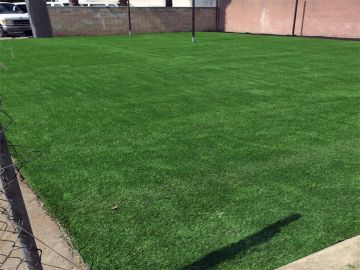 Artificial Grass Photos: Artificial Grass Installation in South San Francisco, California