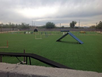 Artificial Grass Photos: Artificial Grass Installation in Pomona, California