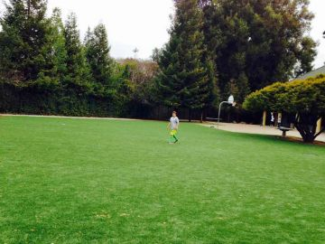 Artificial Grass Photos: Artificial Grass Installation in Elk Grove, California