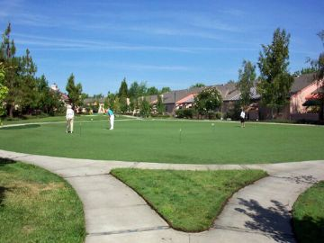 Artificial Grass Photos: Artificial Grass Installation in Carlsbad, California