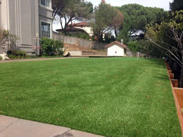 Artificial Grass Photos: Artificial Grass Installation In Campbell, California