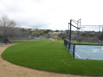 Artificial Grass Photos: Artificial Grass, Fake Grass In Los Angeles, California
