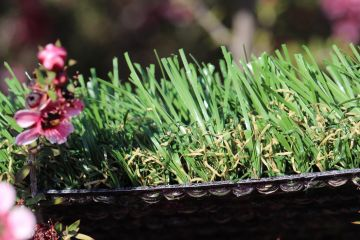 Outdoor Artificial Grass For Lawns
