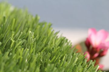 Synthetic Turf Best