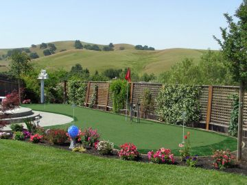 Artificial Grass Photos: Artificial Grass Installation in La Mesa, California