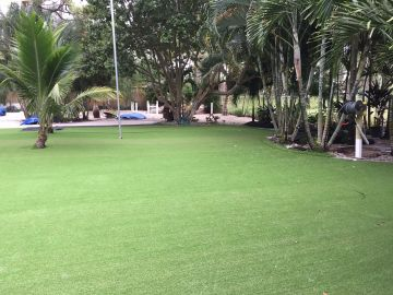 Landscape Ideas: Artificial Grass, Synthetic Turf.
