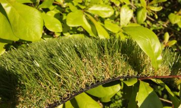 Artificial Grass Cashmere 52 Softest Synthetic Grass