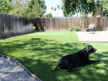 Artificial Grass Photos: Synthetic Grass Installation In Elk Grove, California