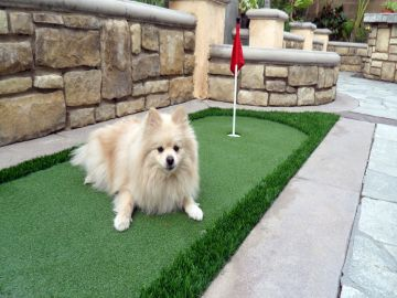 Artificial Grass Photos: Synthetic Grass Installation In Santa Ana, California
