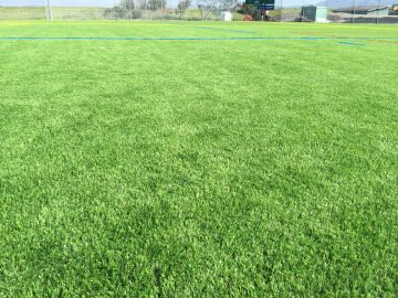 Artificial Grass Photos: Synthetic Grass Installation In Santa Rosa, California