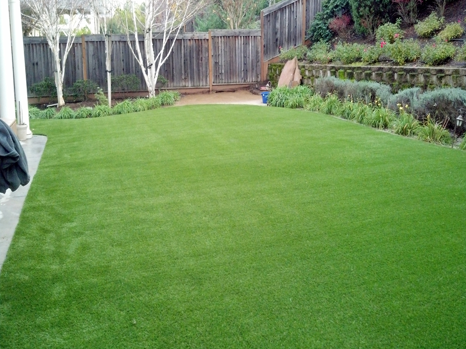 Artificial grass synthetic turf brentwood california for Home turf texas landscape design llc houston tx