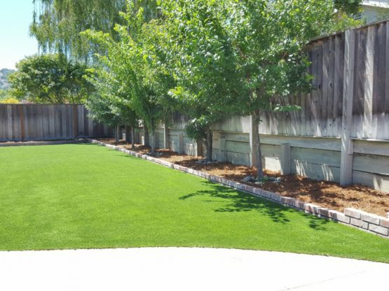 Artificial Grass | Synthetic Turf Chatsworth California