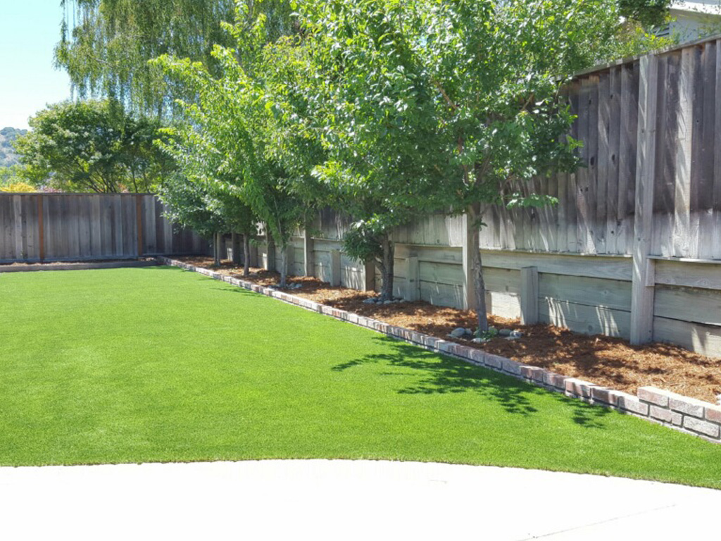 Turf Vs Grass Backyard : Artificial Grass  Artificial Grass  Synthetic Turf Chatsworth