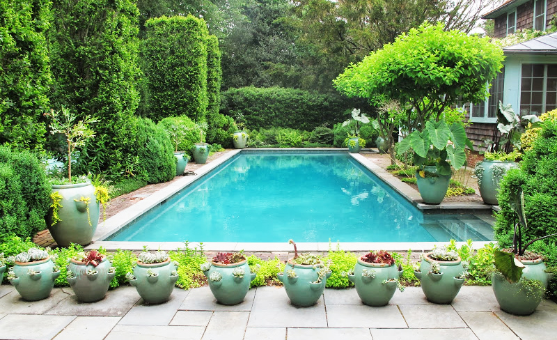 A Guide To Effective Pool Landscaping