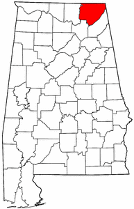 Artificial grass, synthetic turf in Jackson County, Alabama