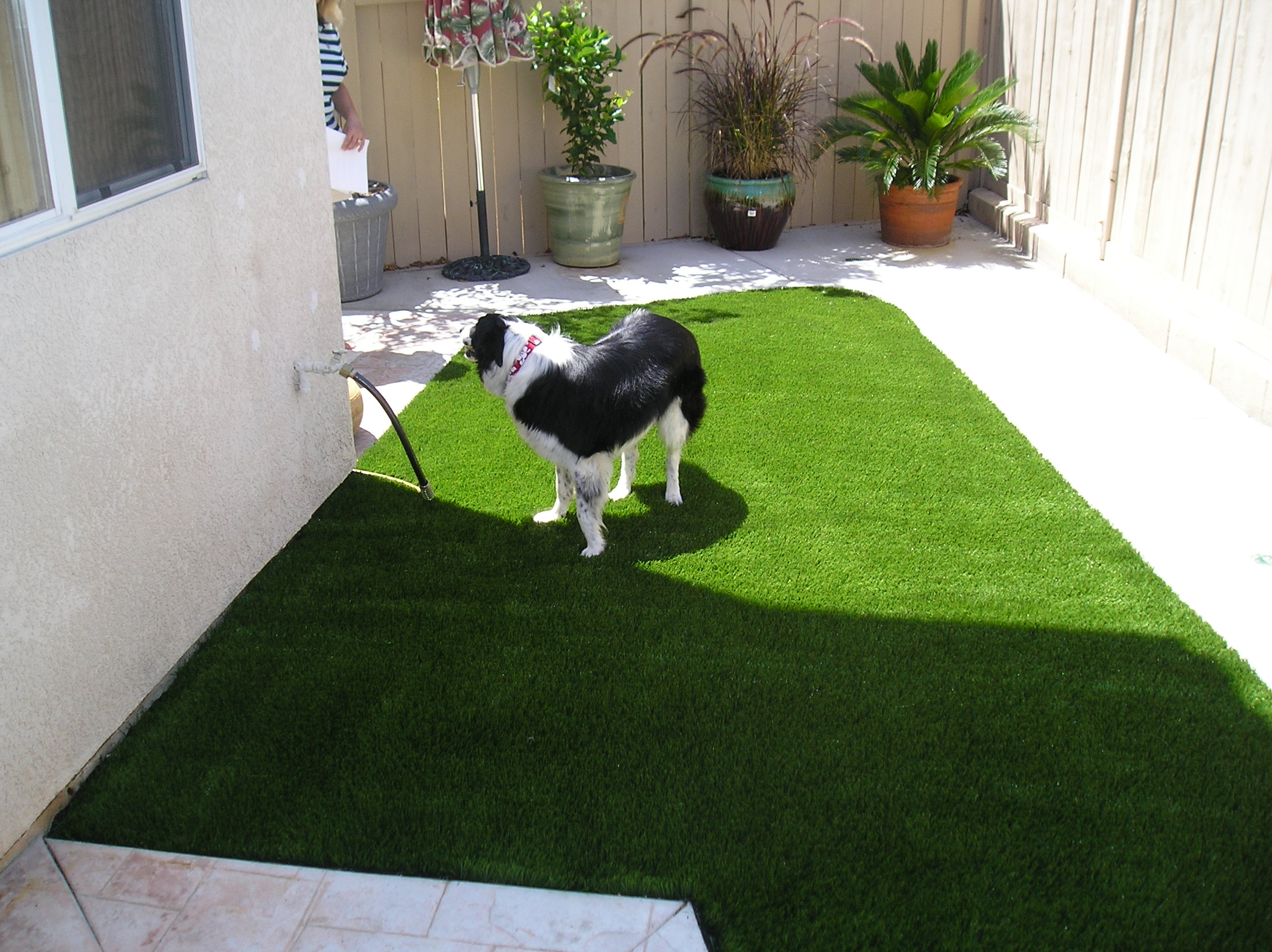 S Blade-90 landscaping with artificial grass,grass looking rug,real looking fake grass,real looking artificial grass,artificial grasses,fake grasses,grass looking rug,real looking fake grass,real looking artificial grass