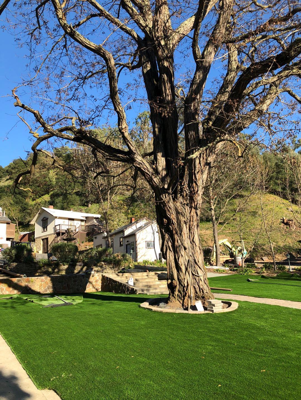 Riviera Monterey-84 best artificial grass,best fake grass,best synthetic grass,best turf,best artificial grass for home,used artificial turf,artificial lawn,synthetic lawn,fake lawn,turf lawn,fake grass lawn,artificial grass,fake grass,synthetic grass,grass carpet,artificial grass rug,used artificial turf,artificial lawn,synthetic lawn,fake lawn,turf lawn,fake grass lawn