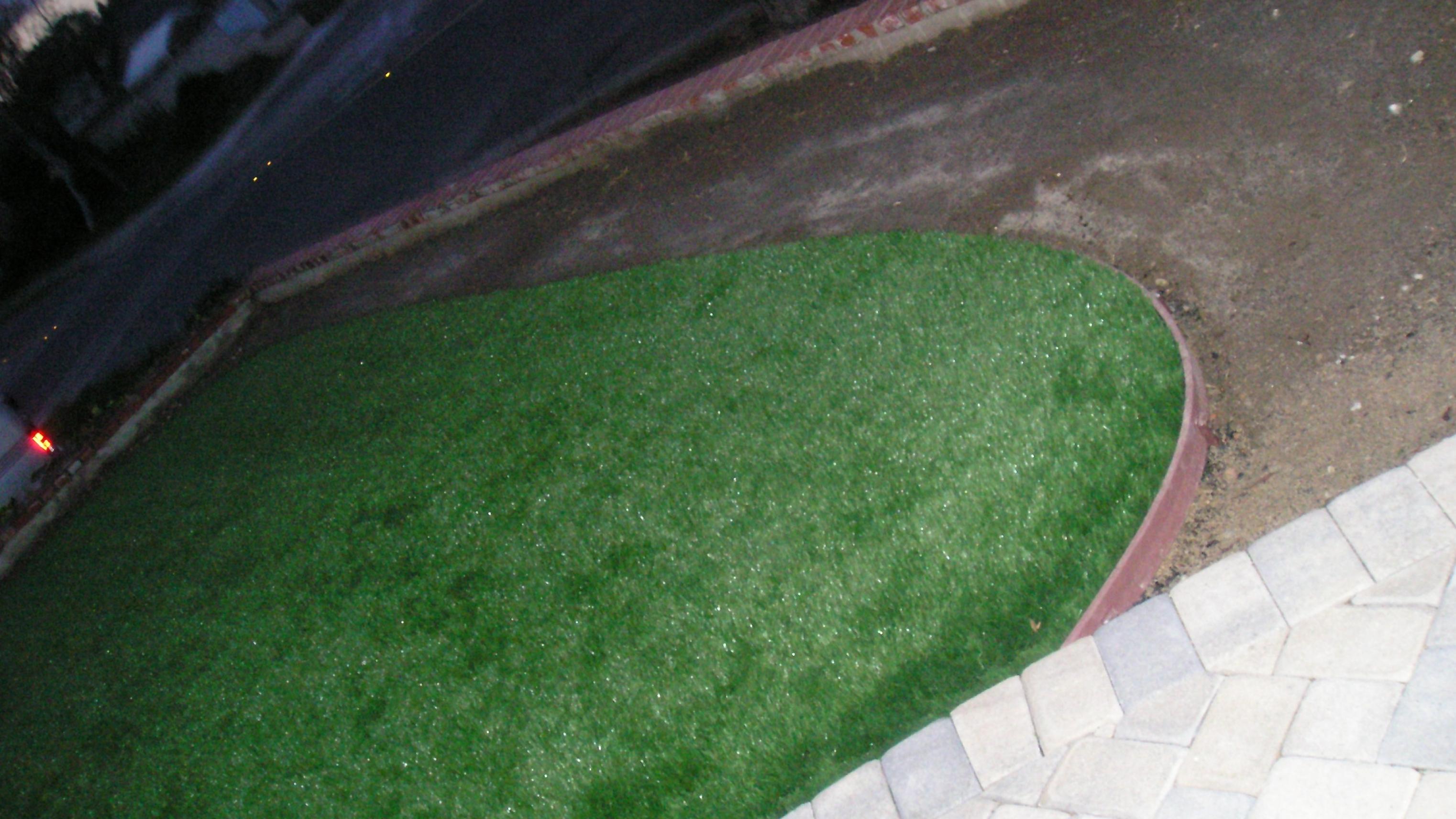 Star Grass-35