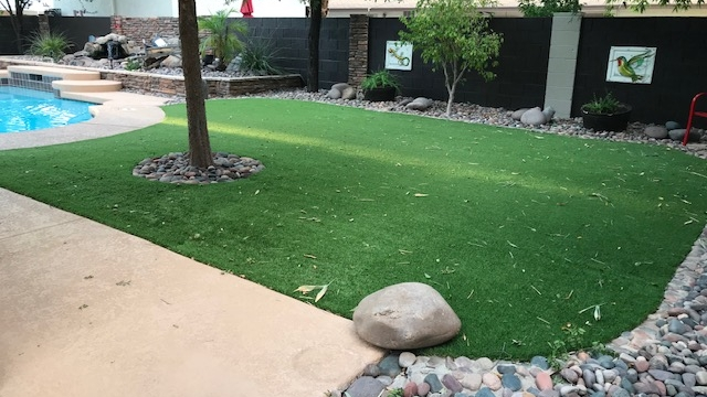 Spring-50 synthetic grass solutions,synthetic turf solutions,artificial grass solutions,artificial turf backyard,backyard pets,astroturf yard,backyard artificial grass,astro turf yard cost,fake grass for dogs,artificial grass for dogs,artificial turf for dogs,best grass for dogs,grass for dogs,artificial grass cost,artificial grass for dogs,home depot artificial grass,artificial turf for dogs,arti