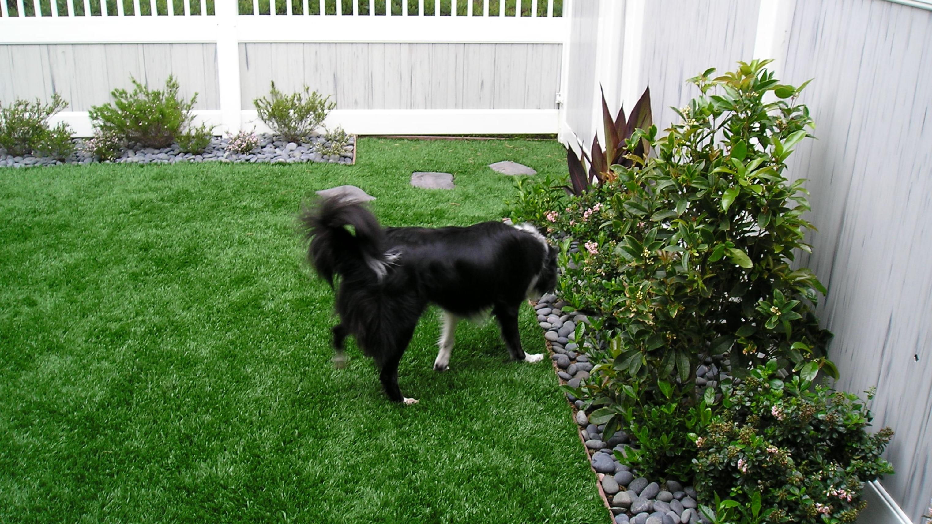 Olive-92 Stemgrass artificial grass,fake grass,synthetic grass,grass carpet,artificial grass rug