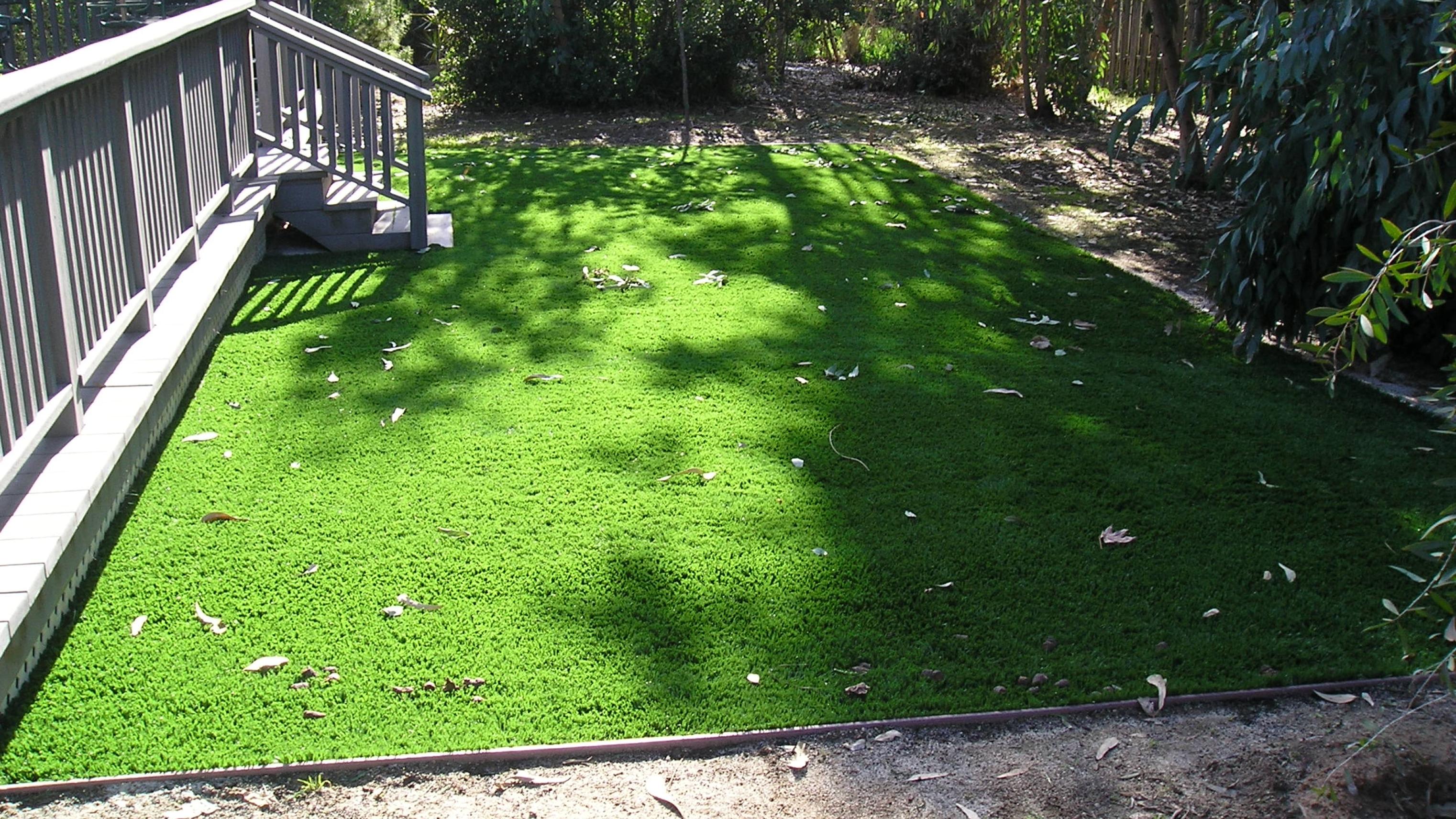 Riviera Monterey-84 best artificial grass,best fake grass,best synthetic grass,best turf,best artificial grass for home,artificial lawn,synthetic lawn,fake lawn,turf lawn,fake grass lawn