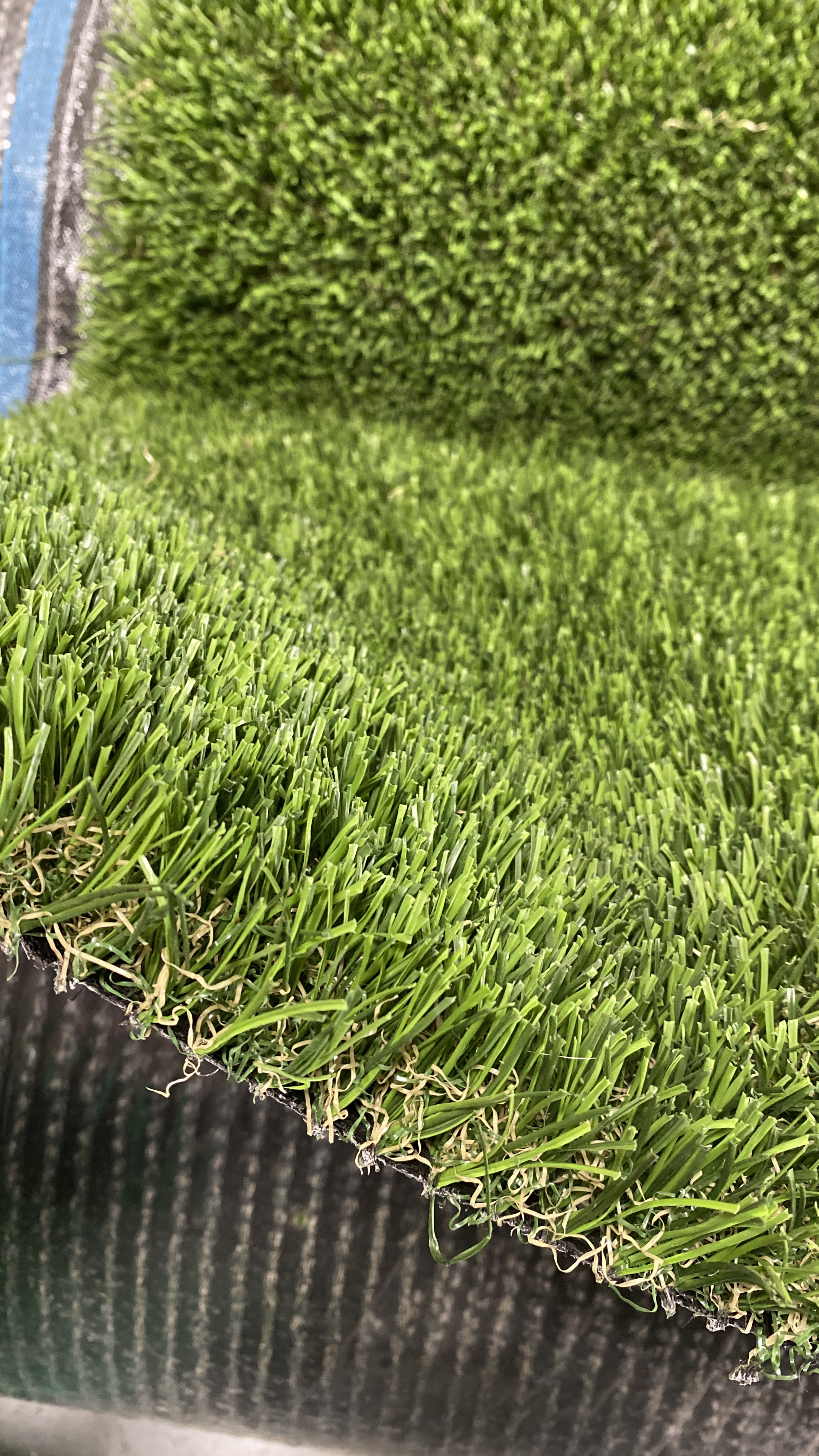 Double S-72 artificial grass cost,artificial grass for dogs,home depot artificial grass,artificial turf for dogs,artificial grass reviews,artificial grasses,fake grasses,how much does artificial turf cost,how much does synthetic grass cost,how much does it cost to install fake grass,how much does turf grass cost,how much does synthetic grass cost installed
