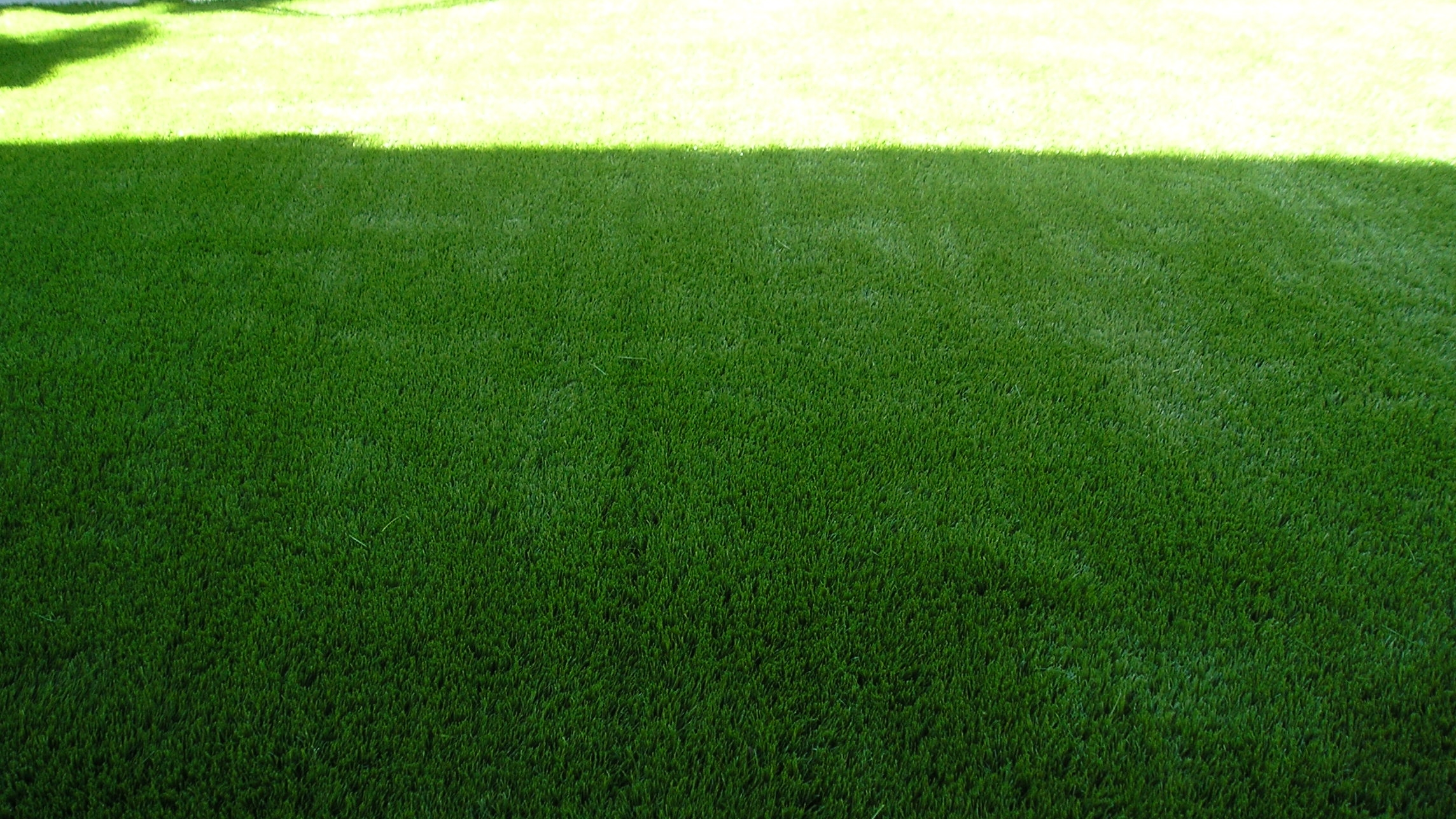 Super Natural 60 fake grass,fake grass for yard,fake lawn,fake grass carpet,fake turf,artificial grass,fake grass,synthetic grass,grass carpet,artificial grass rug