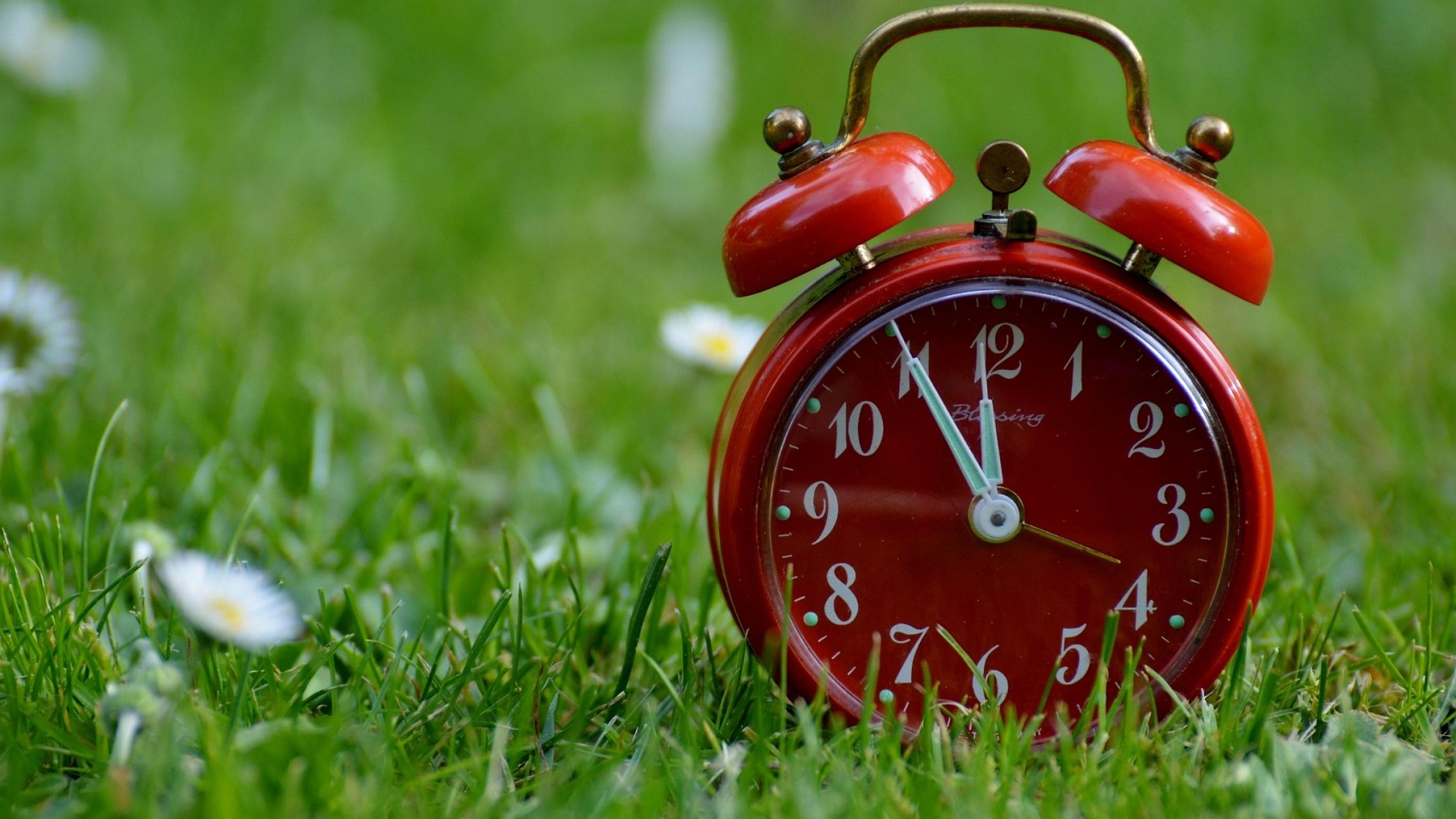 Clock on Lawn Grass