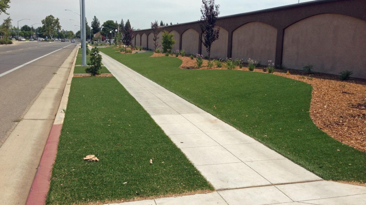 Artificial Grass Installation In San Rafael, California