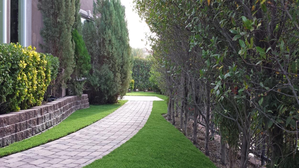 Artificial Grass Installation in Milpitas, California