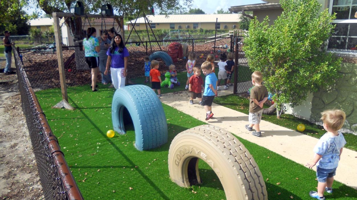 Artificial Grass Installation in Palm Harbor, Florida