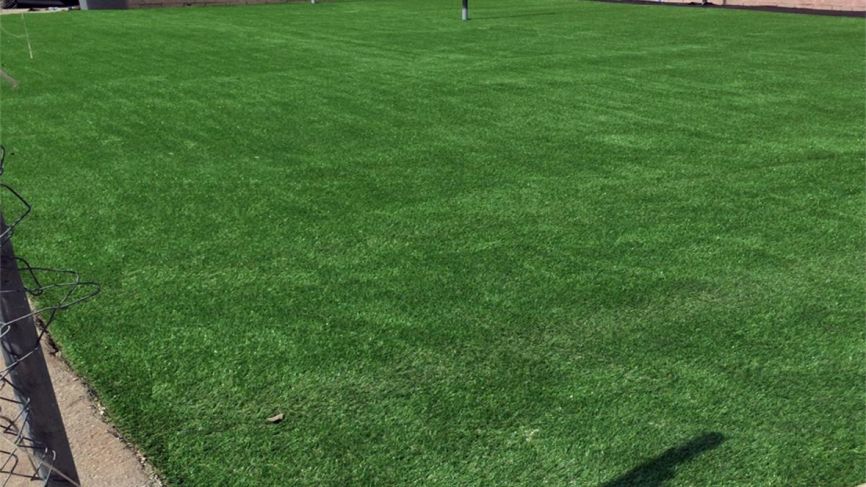Artificial Grass Installation in South San Francisco, California
