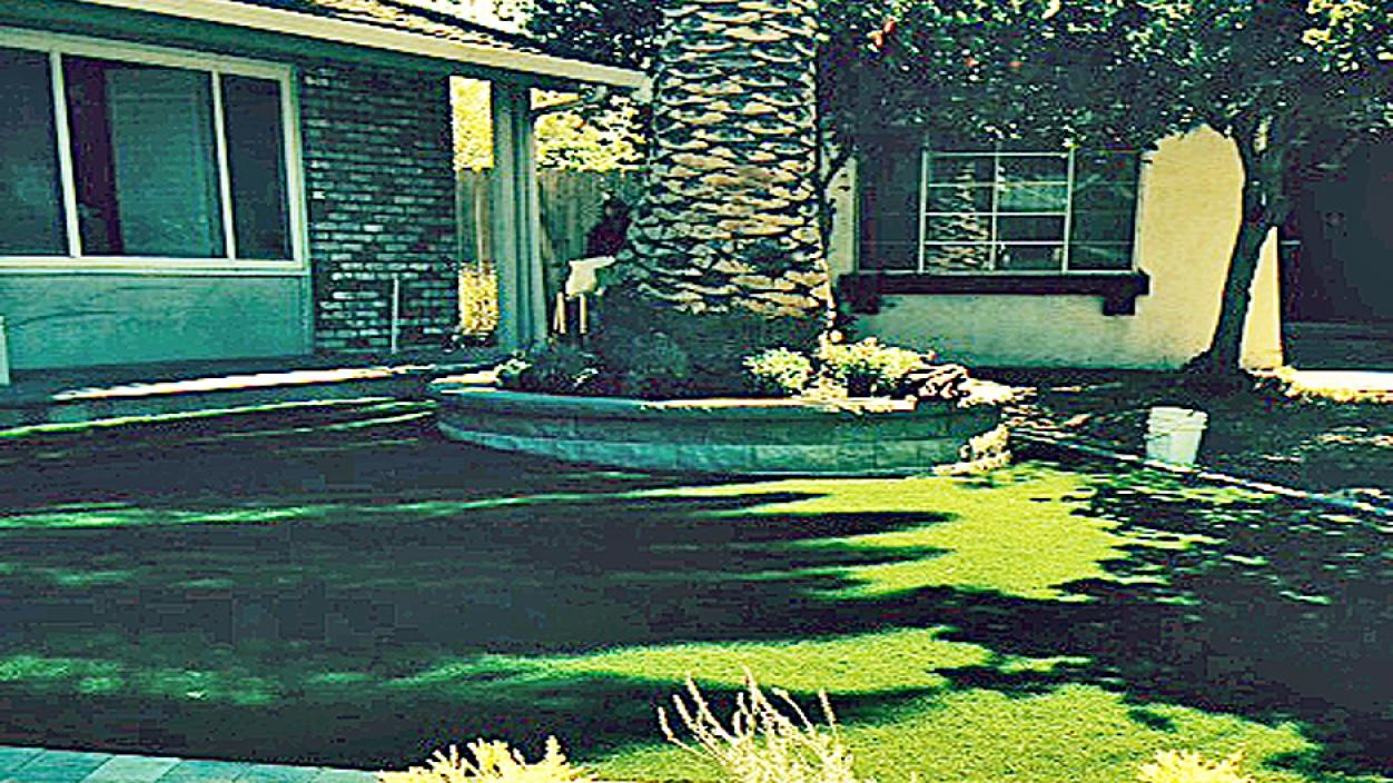 Artificial Grass Installation in Martinez, California