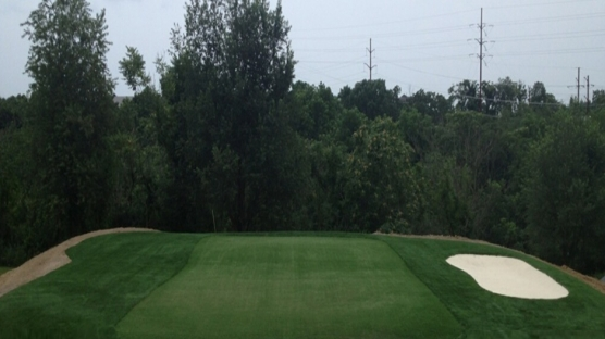 Artificial Putting Green Turf Ponte Vedra Beach Florida