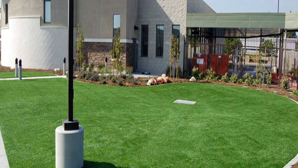 Artificial Grass Installation in Norwalk, California