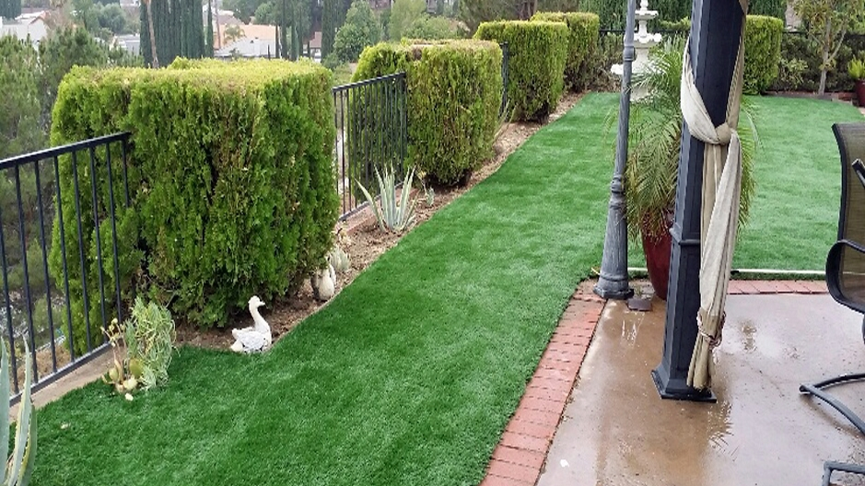 Artificial Grass Installation in Murrieta, California