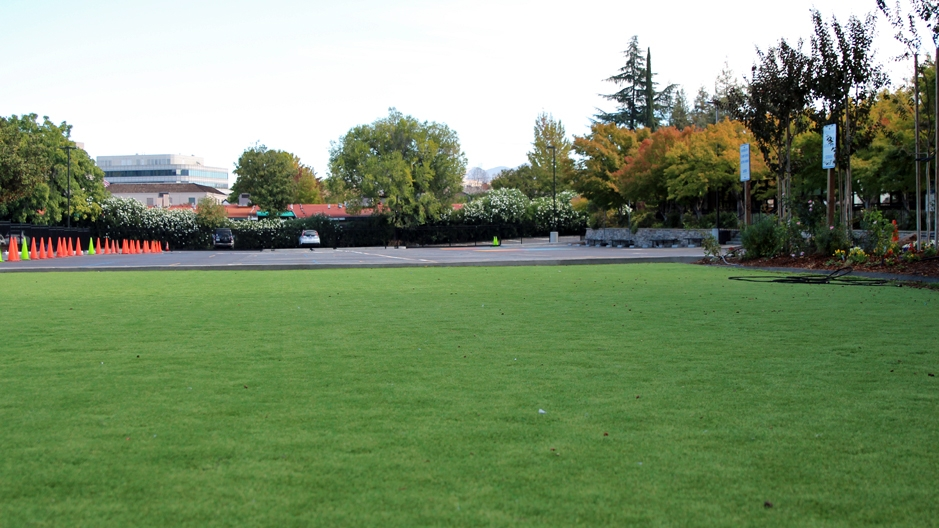 Artificial Grass Installation In Lakewood, California