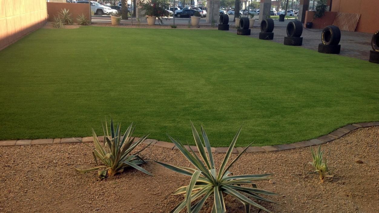 Artificial Grass Installation In Marana, Arizona