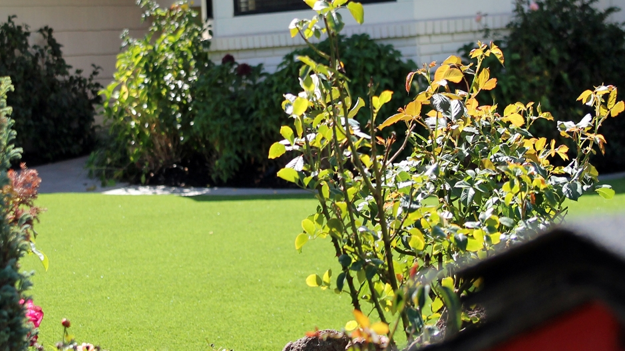 Artificial Grass Installation In Van Nuys, California